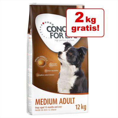 10 + 2 kg gratis! 12 kg Concept for Life al miglior prezzo su zooplus