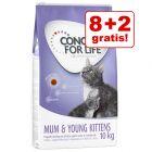 8 + 2 kg gratis! 10 kg Concept for Life