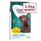 12 + 1,5 kg gratis! 13,5 kg Concept for Life Hrană câini
