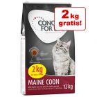 10 + 2 kg gratis! 12 kg Concept for Life Hrană pisici