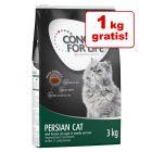 2 + 1 kg gratis! 3 kg Concept for Life hrană uscată pentru pisici
