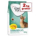 10 + 2 kg gratis! 12 kg Concept for Life kattemad bonuspose