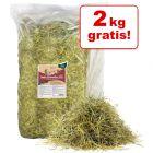 10 + 2 kg gratis! 12 kg Hansepet Natur-Wiesenheu