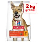 12 + 2 kg gratis! 14 kg Hill's Science Plan hrană uscată câini