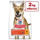 12 + 2 kg gratis! 14 kg Hill's Science Plan Hundefòr