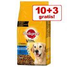 10 + 3 kg gratis! 13 kg Pedigree Vital Senior 8+