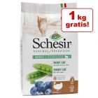 3,5 + 1 kg gratis! 4,5 kg Schesir Natural Selection
