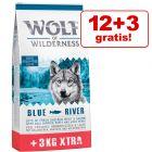 12 + 3 kg gratis! 15 kg Wolf of Wilderness Adult droogvoer