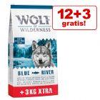 12 + 3 kg gratis! 15 kg Wolf of Wilderness Adult tørfoder