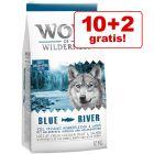 10 + 2 kg gratis! 12 kg Wolf of Wilderness hrană uscată câini