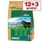 12 + 3 kg gratis! Markus-Mühle Black Angus Adult