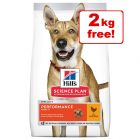 14kg Hill's Science Plan Speciality Dry Dog Food - 12kg + 2kg Free!*
