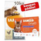 10 kg IAMS for Vitality + 12 x 85 g Delights in Jelly kaupan päälle!