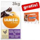 3 kg IAMS torrfoder + 12 x 85 g IAMS Delight på köpet!