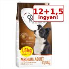 12+1,5 kg ingyen! Concept for Life kutyatáp bónuszcsomagban