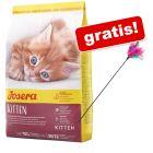 2 kg Josera + Wędka dla kota z kolorowymi piórkami gratis!