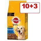 10 + 3 kg kaupan päälle: Pedigree Senior 8+