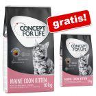 9 kg/10 kg Concept for Life hrană uscată pisici + 3 kg Extra Gratis!