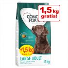 12 kg + 1,5 kg - Concept for Life Overfill Crocchette per cani