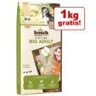 10,5 kg + 1 kg gratis! 11,5 kg bosch Bio Adult / Senior hrană uscată câini
