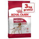 1 kg / 3 kg gratis! 9 kg / 18 kg Royal Canin Size Hundefutter im Bonusbag