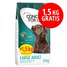 12 kg + 1,5 kg på köpet! Concept for Life hundfoder i bonuspåse