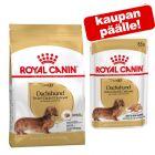 3 kg / 7,5 kg Royal Canin Breed -kuivaruoka + 10/12 pussia märkäruokaa kaupan päälle!