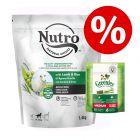 1,4 kg NUTRO torrfoder + 170 g Greenies tuggodis Medium till sparpris!