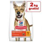12 + 2 kg på köpet! Hill's Science Plan 12 kg hundfoder