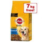 26kg Pedigree Senior 8+ Complete Chicken Dry Dog Food - 19kg + 7kg Free!*