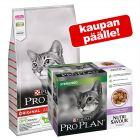 10 kg PRO PLAN kissanruoka + 10 x 85 g Nutrisavour Sterilised kaupan päälle!