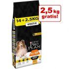 14 + 2,5 kg - Pro Plan Overfill