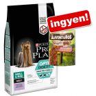 7 kg Pro Plan száraztáp + 300 g AdVENTuROS nuggets snack ingyen!