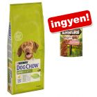 14 kg Purina Dog Chow + 300 g ADVENTUROS Nuggets ingyen!