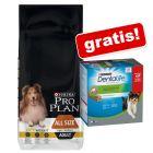 14 kg Purina Pro Plan Hondenvoer + Purina Dentalife Snacks gratis!