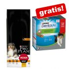 14 kg Purina Pro Plan hrană uscată + Purina Dentalife Snackuri gratis!