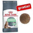 4 kg Royal Canin hrană uscată + Natural Catnip Ball Jucărie pisici GRATIS!