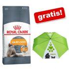 4 kg Royal Canin hrană uscată + Umbrelă automată GRATIS!