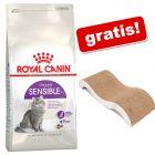 4 kg Royal Canin hrană uscată + Wave de zgâriat GRATIS!