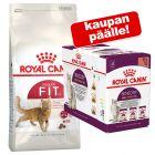 10 kg Royal Canin -kuivaruokaa + 12 x 85 g Sensory in Gravy -lajitelma kaupan päälle!