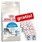 10 kg Royal Canin + 12 x 85 g / 195 g passendes Nassfutter gratis!