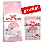 10 kg Royal Canin + 12 x 85 g  Royal Canin kapsičky zdarma!
