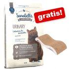 10 kg Sanabelle + mata do drapania Welle gratis!