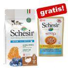 1,4 kg Schesir Natural Selection Kitten + 6 x 85 g Soup gratis!
