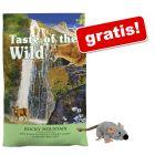 6,6 kg Taste of the Wild + Trixie pluszowa myszka wypełniona kocimiętką gratis!