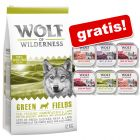 12 kg Wolf of Wilderness hrană uscată câini + 6 x 300 g tăvițe WoW gratis!