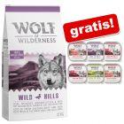 12 kg Wolf of Wilderness + 6 x 300 g umido Adult assortito gratis!