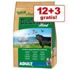 12 + 3 kg zdarma! 15 kg Markus Mühle Black Angus Adult