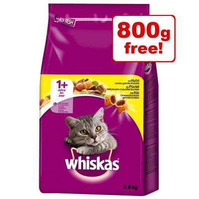 3kg/2.8kg Whiskas Dry Cat Food + 800g Free!*
