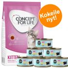 Kitten-kokeilupakkaus: 400g Concept for Life  + Cosma Nature